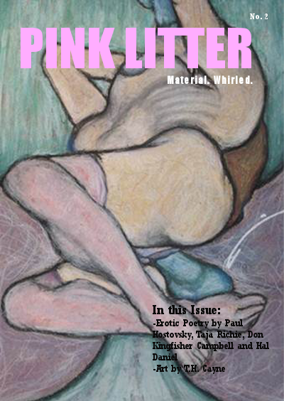 pinklitter2cover
